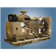 Cummins Diesel Generator Set (E-C120)