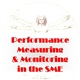 Performance measurement and monitoring in the SME