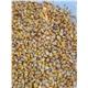 Yellow Maize (Corn)