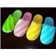 Indoor Slippers (SNLWL013)