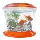 Gold Fish Bowl (Small)