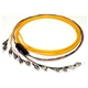 Bunchy Fiber Optic Patch Cord and Pigtail