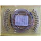 Ribbon Fiber Optic Patch Cord