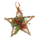 12-Inch Winterberry Star