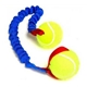 Bungee Ball Tug with Tennis Balls