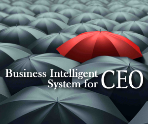Business Intelligent System for CEO