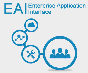 EAI ( Enterprise Application Interface)